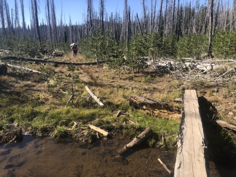 Creek crossing and burned trees near Fish lake