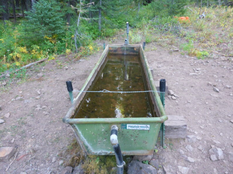 PO Saddle Water Source